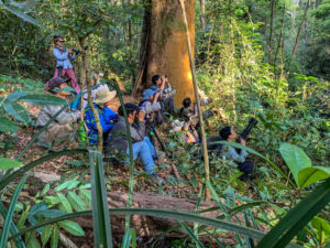 Discover Jahoo - Tourists in the forest taking photos
